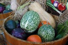Organische groente Royalty-vrije Stock Foto