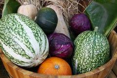 Organische groente Royalty-vrije Stock Fotografie