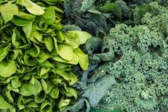 Organische groente bij landbouwersmarkt Royalty-vrije Stock Afbeeldingen
