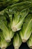 Organische groente bij landbouwersmarkt Royalty-vrije Stock Afbeelding