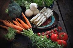 Organische groenten rechtstreeks van de tuin, wortelen, radijs, broccoli, asperge, tomaten stock afbeeldingen