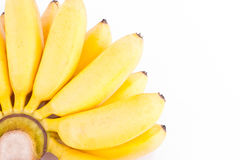 Organische Hand von goldenen Bananen auf weißer Hintergrund dem gesunden Fruchtlebensmittel Pisang Mas Banana lokalisiert Lizenzfreie Stockbilder