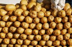 Organische junge Kartoffeln auf Markt Frischer Paprika des roten Pfeffers auf Holz in der Weinleseeinstellung Lizenzfreie Stockfotografie