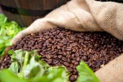 Organische Kaffeebohnen in der Tasche Lizenzfreie Stockbilder