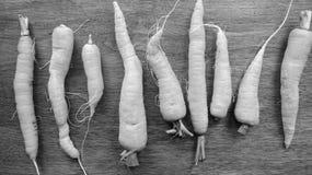 Organische Karotten Stockbilder