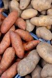 Organische Kartoffeln und süße Kartoffeln stockbild