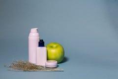 Organische kosmetische, natuurlijke ingrediënten Royalty-vrije Stock Fotografie