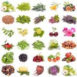 Organische landbouw Royalty-vrije Stock Afbeeldingen