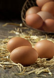 Organische landbouwbedrijf verse eieren Royalty-vrije Stock Foto's