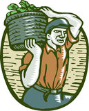 Organische Landbouwer Basket Crop Woodcut Linocut Stock Foto's
