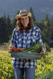 Organische Landwirtschaft Stockbild