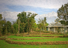 Organische Landwirtschaft u. landwirtschaftliches agricu Lizenzfreies Stockfoto