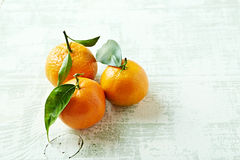 Organische Mandarinen mit Blättern Stockfotografie
