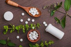 Organische medische pillen met kruideninstallatie Royalty-vrije Stock Foto's