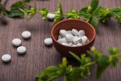Organische medische pillen met kruideninstallatie Stock Foto