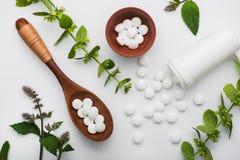 Organische medische pillen met kruideninstallatie Stock Afbeeldingen