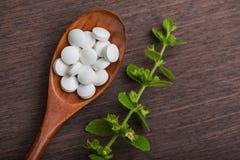 Organische medische pillen met kruideninstallatie Royalty-vrije Stock Afbeelding