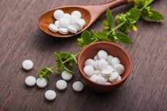 Organische medische pillen met kruideninstallatie Royalty-vrije Stock Foto