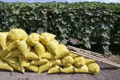 Organische meststoffenzakken in tuin stock fotografie
