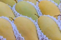 Organische Nam Dok Mai-mango's voor verkoop bij de fruitmarkt Na Stock Afbeelding