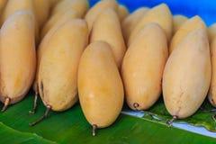 Organische Nam Dok Mai-mango's voor verkoop bij de fruitmarkt Na Royalty-vrije Stock Fotografie