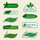 Organische natürliche Logodesignschablone unterzeichnet mit grünen Blättern Stockbild