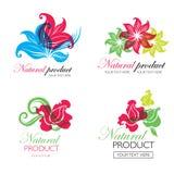 Organische natürliche Logos Stockbild
