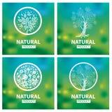 Organische natürliche Logos Lizenzfreies Stockfoto