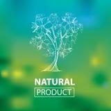 Organische natuurlijke emblemen Stock Afbeeldingen