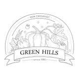 Organische neue Firmenzeichenschablone mit Gemüse Stockbild