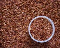 Organische ongepelde rijst Stock Foto's