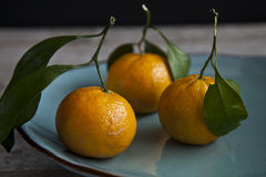 Organische Orangen stockbilder