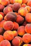 Organische Pfirsiche Stockbilder