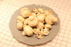 Organische Pilze Stockfotografie