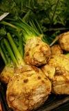 Organische plantaardige macro Royalty-vrije Stock Afbeelding