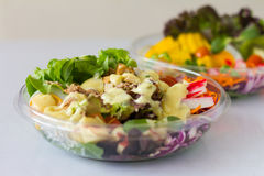 Organische plantaardige salade Stock Foto