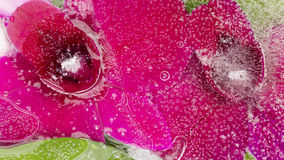 Organische purpurrote Blumenabstraktion Lizenzfreie Stockfotos