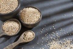 Organische quinoa zaden in de kom en de lepel stock fotografie