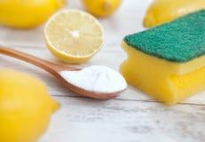 Organische Reiniger, Zitrone und Backnatron lizenzfreie stockfotos