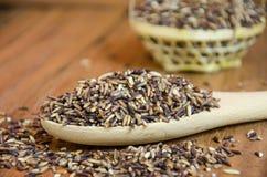 Organische Riceberry-Rijst Stock Foto