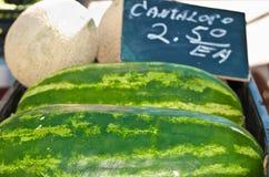 Organische, rijpe, lokale watermeloenen en kantaloep stock afbeelding