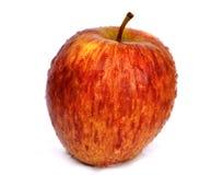 Organische Rode Appel stock foto