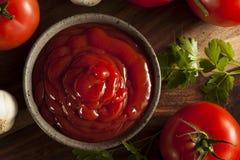 Organische Rode Tomatenketchup stock afbeelding
