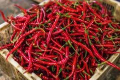 Organische roodgloeiende Spaanse peperspeper voor verkoop op een lokale markt van het eiland van Bali royalty-vrije stock afbeeldingen