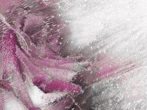 Organische rosa und graue schöne Abstraktion Lizenzfreie Stockfotos