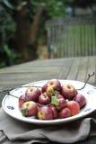 Organische rote Äpfel Lizenzfreies Stockbild