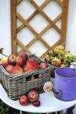 Organische rote Äpfel Stockbild