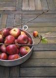 Organische rote Äpfel Lizenzfreie Stockbilder