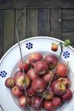 Organische rote Äpfel Stockfoto