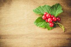 Organische rote Johannisbeere auf hölzernem Hintergrund Lizenzfreies Stockfoto